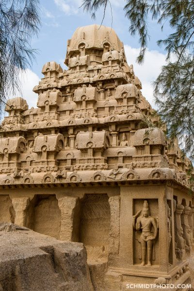 Tom Schmidt Photo India Trip 2015