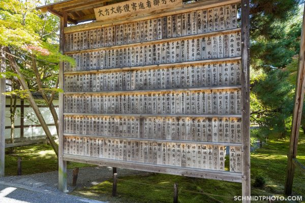 Kyoto travel with tom and priscilla schmidt photo - 27