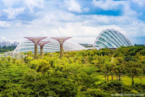 Singapore Island City Travel Blog Wander with Tom Schmidt Priscilla - 01