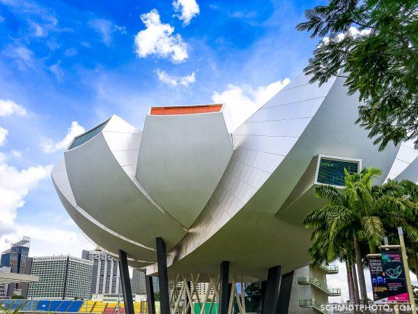 Singapore Island City Travel Blog Wander with Tom Schmidt Priscilla - 54