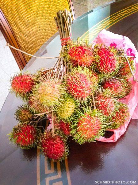 Singapore Island City Travel Blog Wander with Tom Schmidt Priscilla